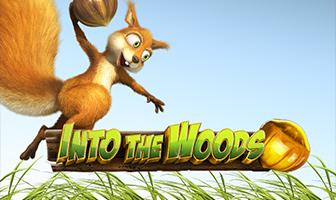 WorldMatch - Into The Woods HD